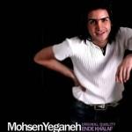 محسن یگانه اند خلاف