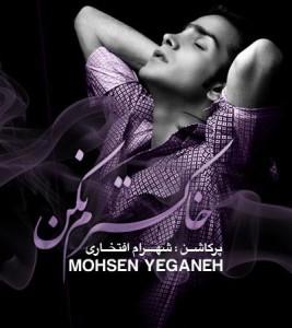 محسن یگانه خاکسترم نکن