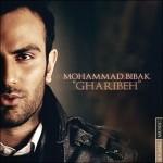 محمد بیباک غریبه