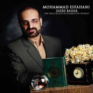 محمد اصفهانی زائر بهار