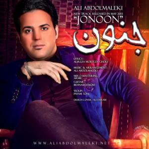 علی عبدالمالکی جنون
