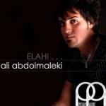 علی عبدالمالکی الهی