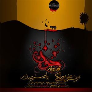 مرتضی زرلکی و ناصر صدر قصه پر از خون