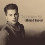 احمد سعیدی دیوونتم زیاد