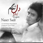 ناصر صدر دلتنگم