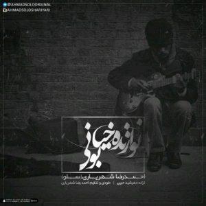 احمد سلو نوازندی خیابونی