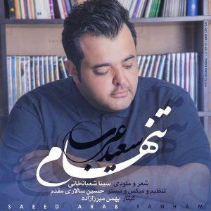 سعید عرب تنهام