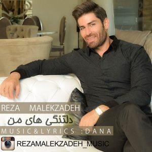 رضا ملک زاده دلتنگی های من