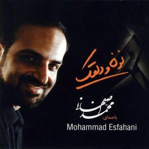 محمد اصفهانی نون و دلقک