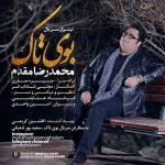 محمدرضا مقدم بوی تاک