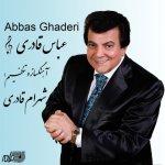 عباس قادری توبه