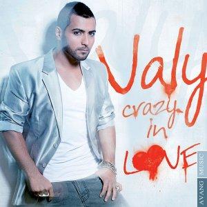 ولی دیوانه در عشق