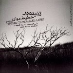 علی قمصری تنیده در خطوط موازی