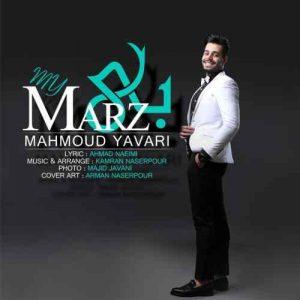 محمود یاوری بی مرز
