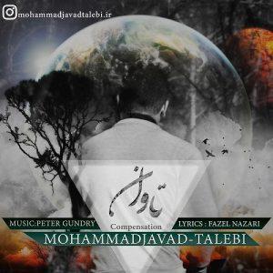 محمد جواد طالبی تاوان