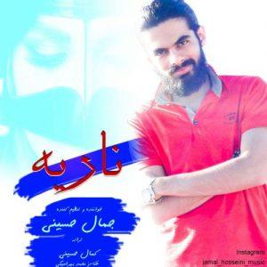 جمال حسینی ناریه
