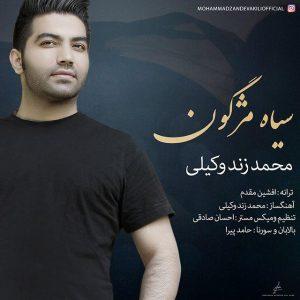 محمد زند وکیلی سیاه مژگون
