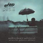 حسین سلیمانی تنهایی