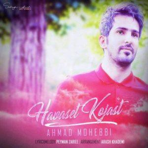 احمد محبی حواست کجاست