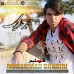 محمد غدیری قلبم