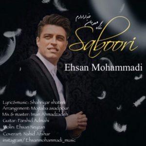 احسان محمدی صبوری