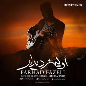 فرهاد فاضلی اولین دیدار (ورژن گیتار)