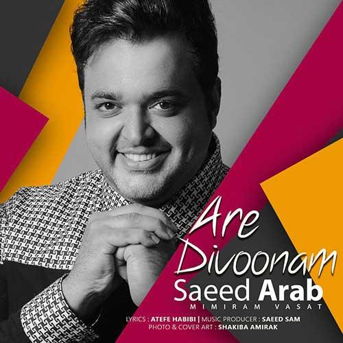 دانلود آهنگ سعید عرب آره دیوونم