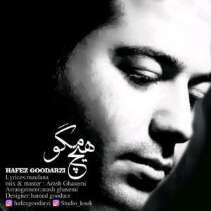 حافظ گودرزی هیچ مگو