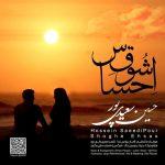حسین سعید پور احساس شوق