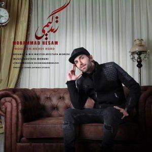 محمد حسام راد زندگیمی