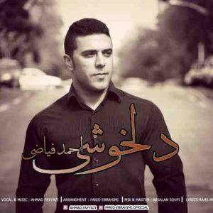 احمد فیاضی دلخوشی