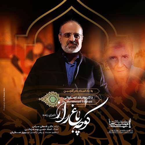 محمد اصفهانی کوچه باغ راز (اجرای زنده)