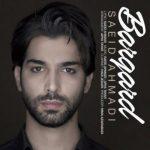 سعید احمدی برگرد
