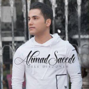 احمد سعیدی دل دیوونه