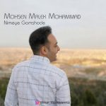 محسن ملک محمد نیمه گمشده