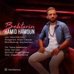 حمید هامون بهترین