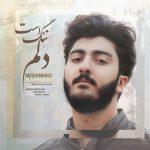 محمد بهرامی دلم تنگ است