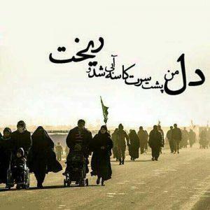 سعید حدادیان روضه حضرت زینب