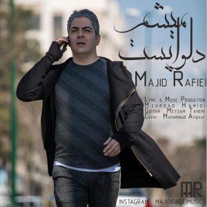 مجید رفیعی دلواپست میشم