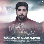محمد قربانپور وقتی تو نیستی