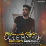 محمد مجلسی گل مریم