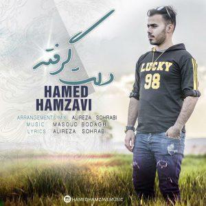 حامد حمزوی دلت گرفته