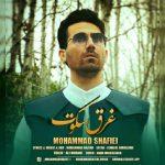 محمد شفیعی غرق سکوت