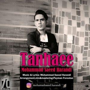 محمدسعید هرندی تنهایی