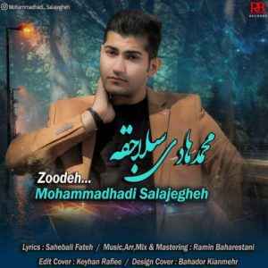 محمد هادی سلاجقه زوده
