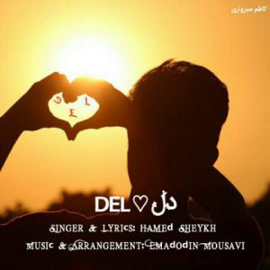 حامد شیخ دل