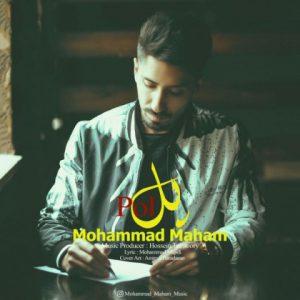 محمد مهام پل