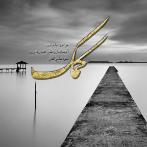 حامد تمدن کمک