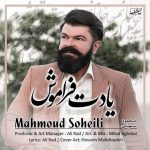 محمود سهیلی یادت فراموش