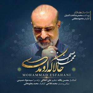 محمد اصفهانی حالا که اومدی